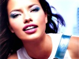 Adriana Lima Celebrity Image 260171024 x 768