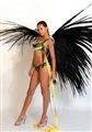 Adriana Lima Celebrity Image 261751280 x 1823