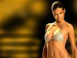 Adriana Lima Celebrity Image 261991024 x 768