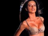 Adriana Lima Celebrity Image 262021024 x 768