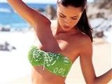 Adriana Lima Celebrity Image 262061024 x 768
