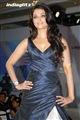 Aishwarya Rai Celebrity Image 26682600 x 896