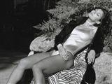 Ali Landry Celebrity Image 286631024 x 768