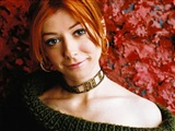 Alyson Hannigan Celebrity Image 296451024 x 768