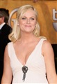 Amy Poehler Celebrity Image 17441280 x 1872