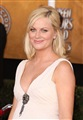 Amy Poehler Celebrity Image 17451280 x 1836