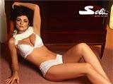 Araceli Gonzalez Celebrity Image 368721028 x 769