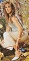 Aracely Arambula Celebrity Image 2727929 x 1903