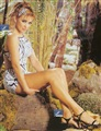 Aracely Arambula Celebrity Image 27391170 x 1524